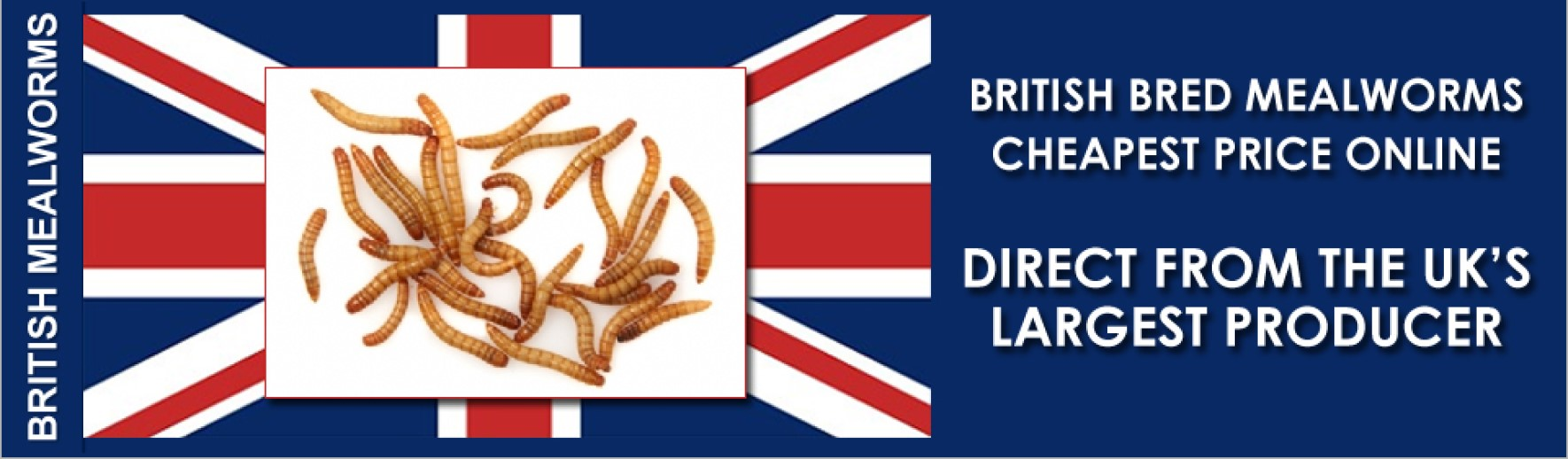 British Bred Mealworms